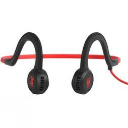 Sportz Titanium Headphones With Mic